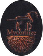 Nvmycorhize